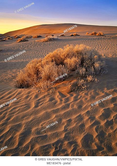 Sand dunes in Christmas Lake Valley, southeast Oregon