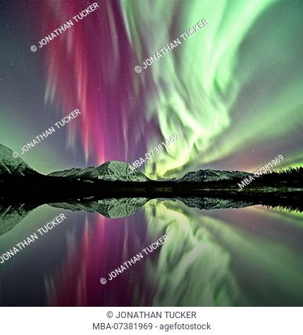Northern lights dancing in the sky, lake, mountains, reflections, Yukon Territory, Canada