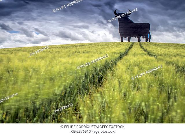 Osborne bull on a wheat field, long exposure shot, Castilleja del Campo, Seville, Spain. The Osborne bull is a 14-metre (46 ft) high black silhouetted image of...