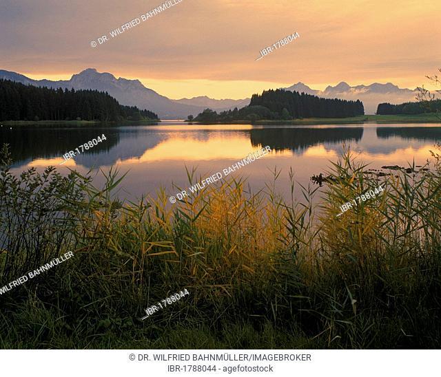 Forggensee Lake, reservoir of the Lech river, Allgaeu, Bavarian Swabia, Bavaria, Germany, Europe