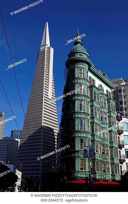 Financial district and Transamerica Pyramid in San Francisco, California, USA
