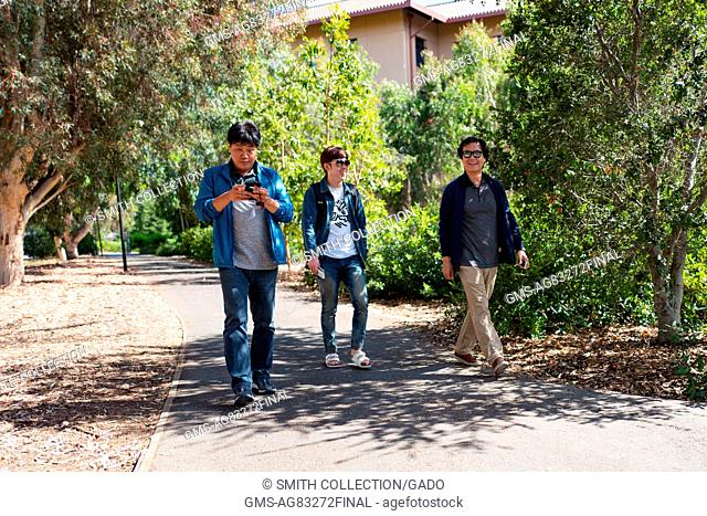 Three young men walk along a tree-lined path, Stanford University, Stanford, California, September 3, 2016