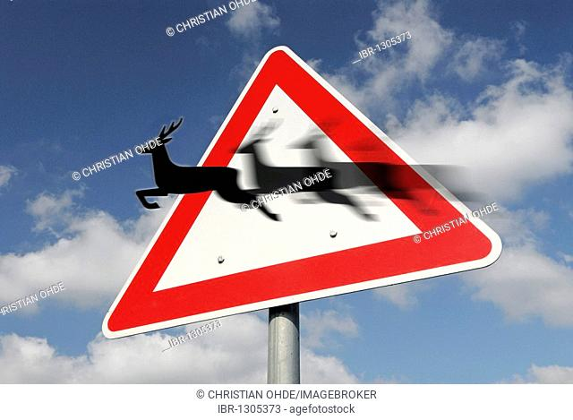 Traffic sign, deer crossing, montage with movement