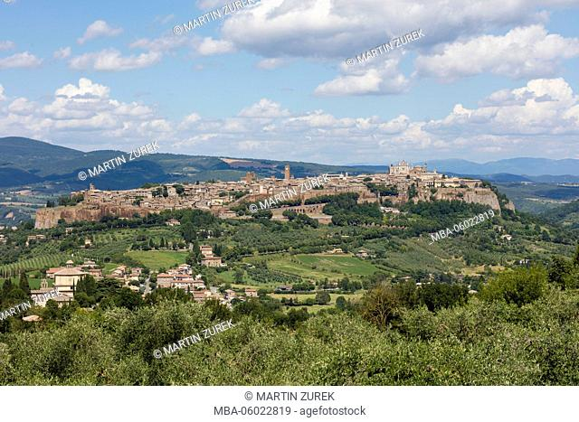 townscape of Orvieto of the surrounding vineyards, vineyards, vineyard, Italy, Umbria
