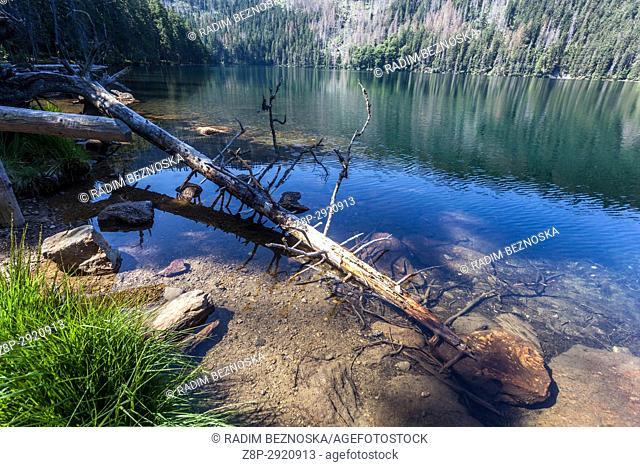 Glacial Black Lake, Cerne jezero in the Sumava Mountains, National Park, Czech Republic