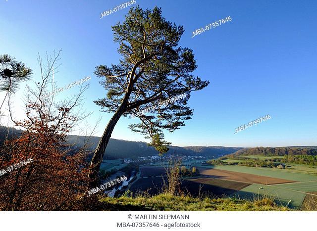View from Arnsberger Leite, Arnsberg and Altmühl, near Kipfenberg, Altmühltal, Upper Bavaria, Bavaria, Germany
