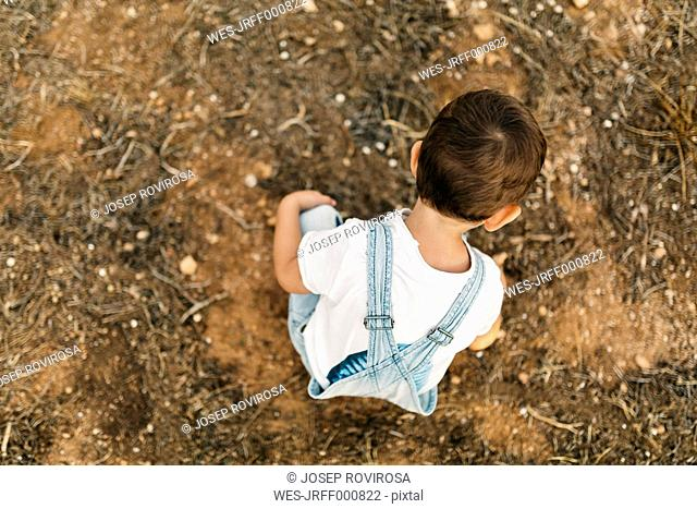 Back view of little boy playing on a field