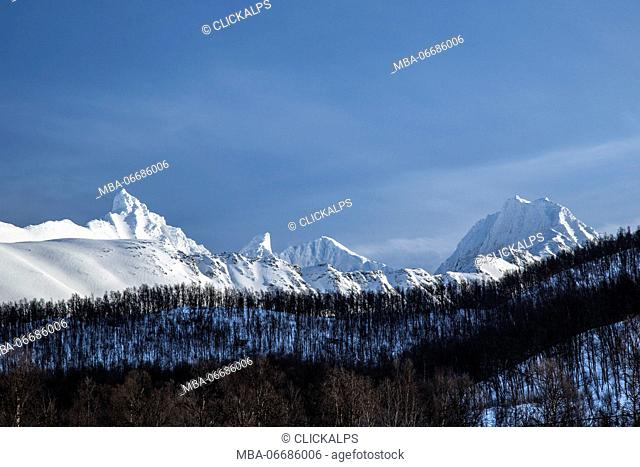 Blue sky and snowy peaks around woods Lyngen Alps Tromsø Lapland Norway Europe