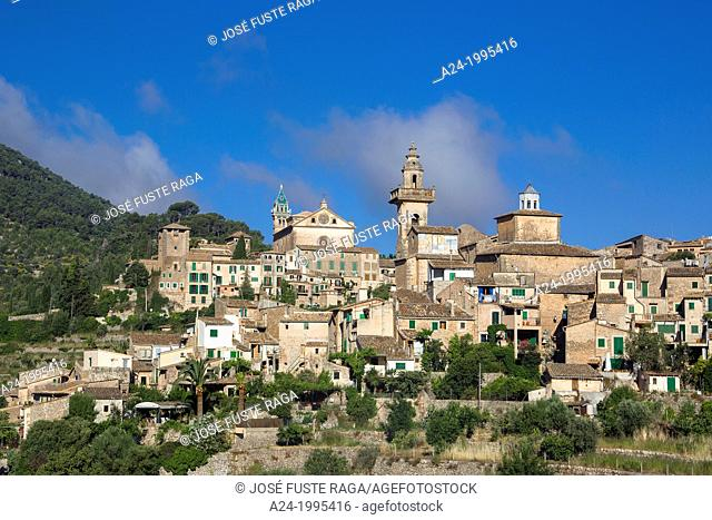 Spain , Mallorca Island, Valldemosa City ,