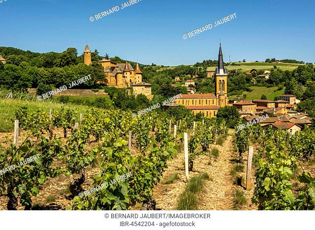Castle and church of Jarnioux, Village of Pierres Dorées, Beaujolais, Rhone, Auvergne-Rhône-Alpes region, France