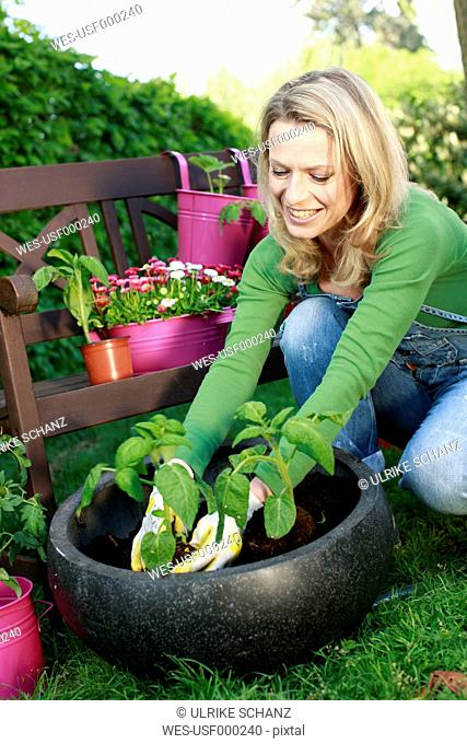 Germany, Bavaria, Mature woman planting flowers in garden, smiling