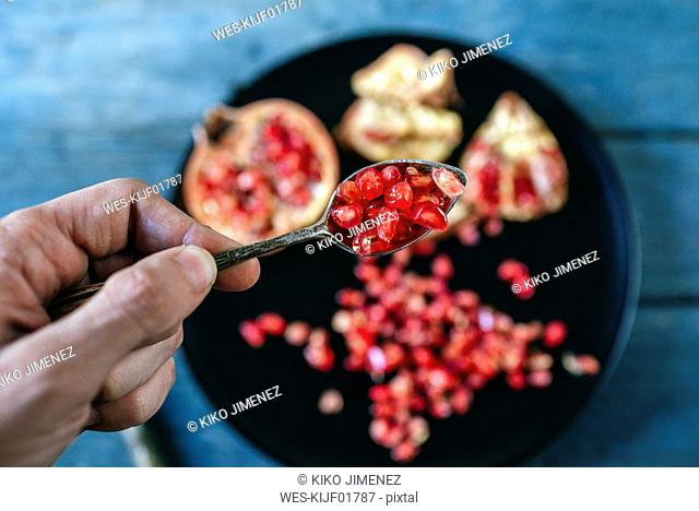 Man's hand holding a tea spoon of pomegranate seed