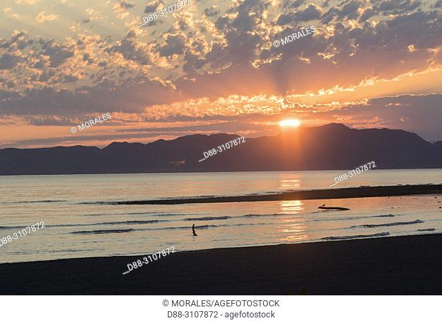Central America, Mexico, Baja California Sur, Gulf of California (also known as the Sea of Cortez or Sea of Cortés, Loreto, Loreto Bay National Marine Park