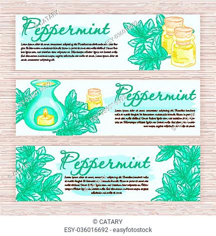 vector hand drawn banner with peppermint and oil burner