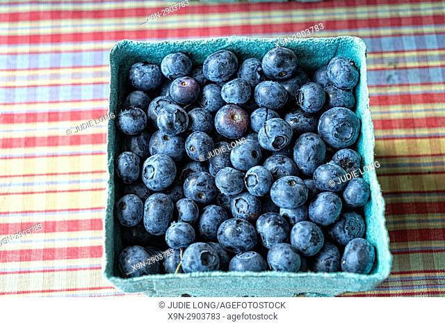 New York City, Manhattan. Pint Paper Container of Freshly Picked Blueberries, Displayed on a Gingham Cloth and Offered for Sale in an Outdoor Market
