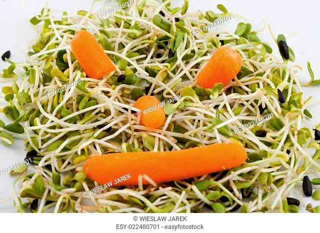 Fresh alfalfa sprouts and carrot isolated on white background