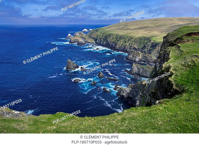 Spectacular coastline with sea cliffs and stacks, home to breeding sea birds at Hermaness, Unst, Shetland Islands, Scotland, UK