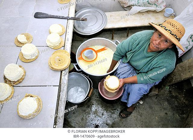 Production of fresh cheese in the Penas Valley, Departamento Oruro, Bolivia, South America