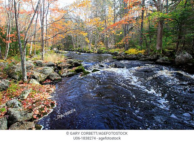 An autumn scene along a stream in the Adirondack mountains of New York, USA