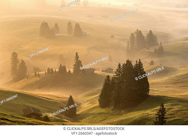Alpe di Siusi/Seiser Alm, Dolomites, South Tyrol, Italy. Autumnal morning light on the Alpe di Siusi/Seiser Alm