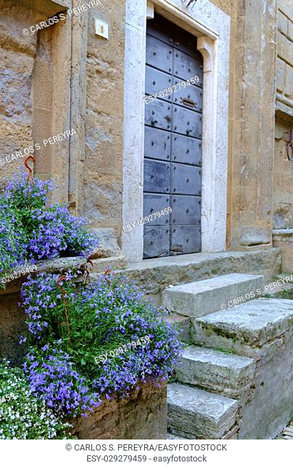 Flowers in the spring in Pienza Tuscany Italy Europe
