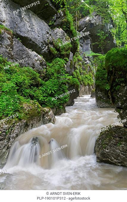 The river Weißbach running through the Seisenbergklamm / Seisenbachklamm, gorge near Weißbach bei Lofer, Saalachtal, Salzburg / Salzburger Land, Austria