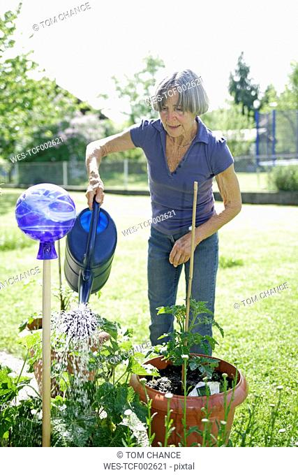 Germany, Bavaria, Senior woman watering plants in garden