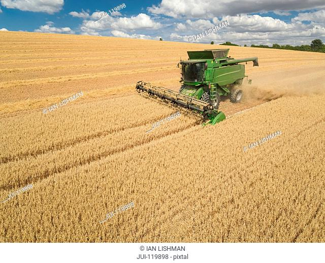 Harvest aerial of combine harvester cutting summer oats field crop on farm