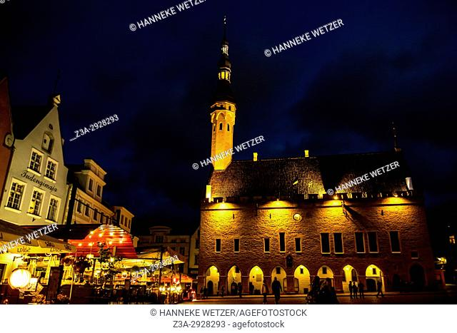 The Town Hall of Tallinn by night, Estonia, Europe