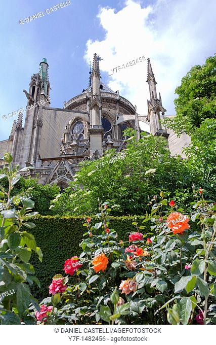 Back view of the Notre Dame Cathedral,Paris,France