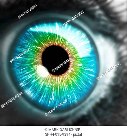 Illustration of an extereme close up of a human iris and pupil