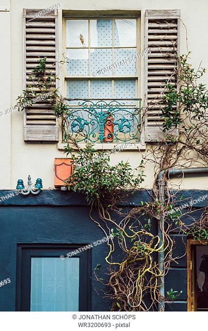 Grown window facade, Brighton, England