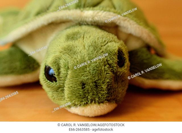 stuffed children's animal - turtle