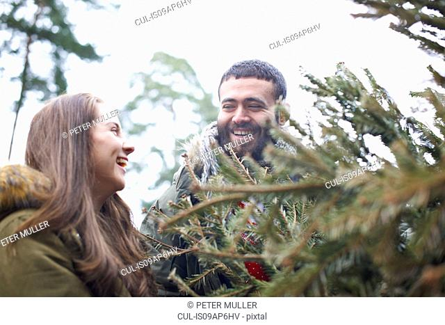 Young couple collecting Christmas tree from forest