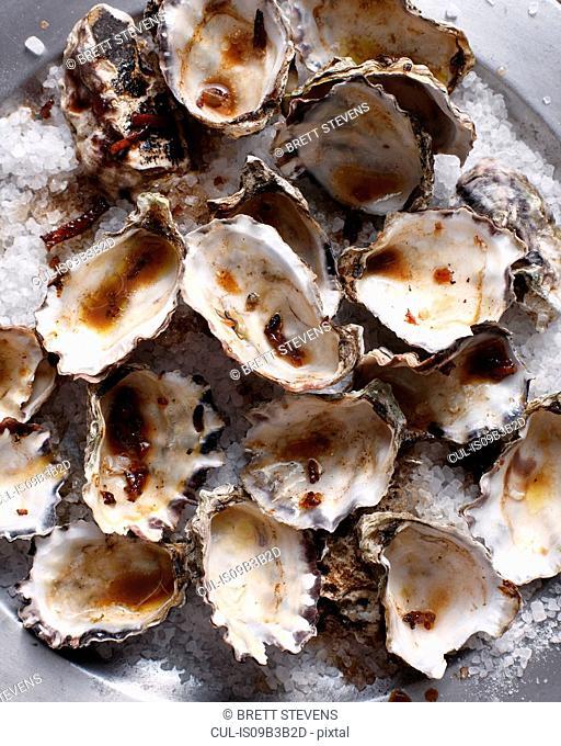 Oyster shells on sea salt