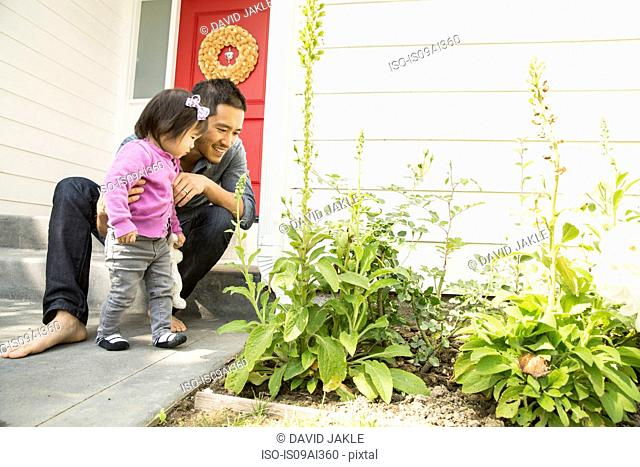 Mid adult man and toddler daughter looking at plants