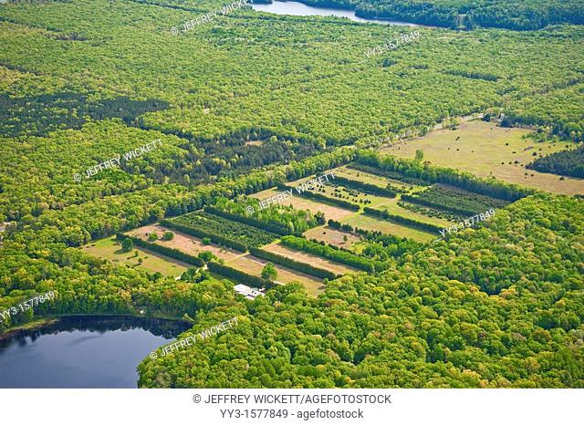 Aerial view of the historic Chittendon tree nursery on the Huron-Manistee National Forest in Michigan, USA