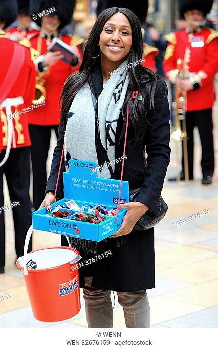 Alexandra Burke sells poppies at Paddington Station Featuring: Alexandra Burke Where: London, United Kingdom When: 02 Nov 2017 Credit: WENN