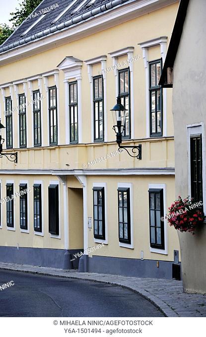 Street in Grinzing Vienna Austria Europe