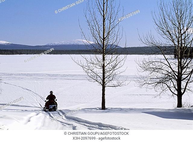 snowmobile trip around Muonio, Lapland, Finland, Northern Europe