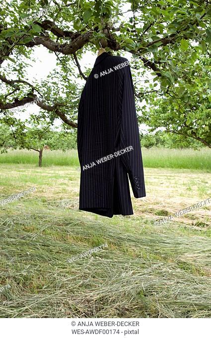 Jacket hanging on tree, close-up