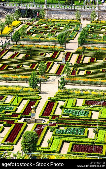 Villandry Castle&#039 s garden, Indre-et-Loire, Centre, France