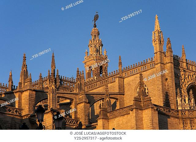 Cathedral and Giralda tower, Seville, Region of Andalusia, Spain, Europe