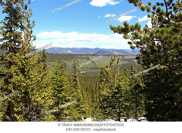 A scenic vista of a pine filled valley from the Glacier Gorge Trail in the Rocky Mountain National Park, Colorado, USA