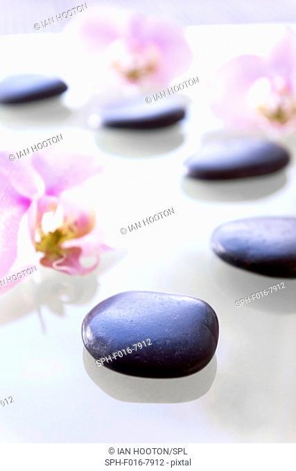 Therapeutic stones and orchids, studio shot