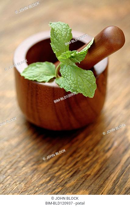 Close up of herbs in wooden mortar and pestle