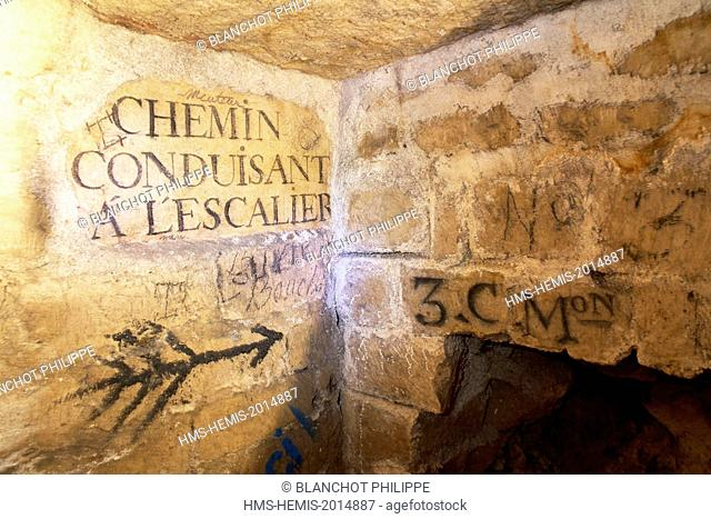 France, Paris, National Museum of Natural History, Catacombs