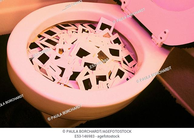 35mm slides tossed in the toilet