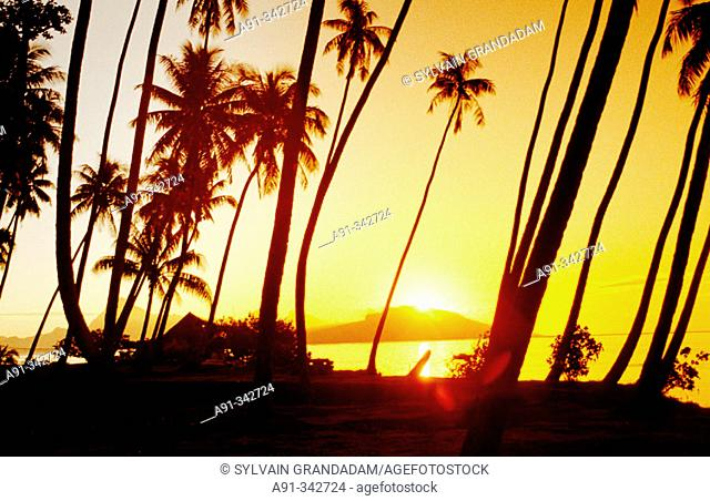 Tahiti island in the Windward islands. Society archipelago. French Polynesia