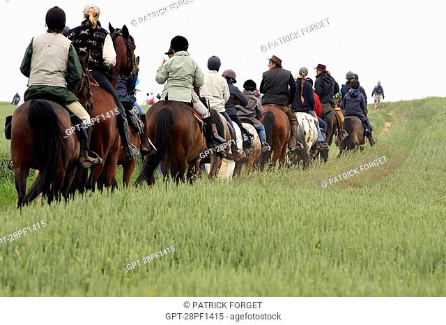 HORSE RIDING IN THE TRANSBEAUCE RACE OF CHARTRES , ORGERES-EN-BEAUCE, EURE-ET-LOIR 28, FRANCE
